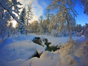 Un genial paisaje invernal