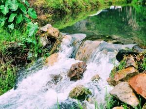 Riachuelo de agua clara, diáfana y transparente