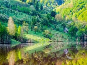 Paisaje a orillas del río con agua cristalina