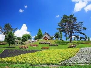 Jardines  junto al pequeño templo