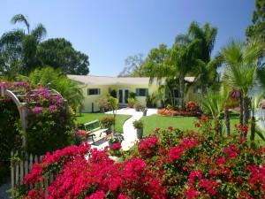 Casita campestre con plantas y flores de colores