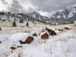 Espectacular invierno en el valle
