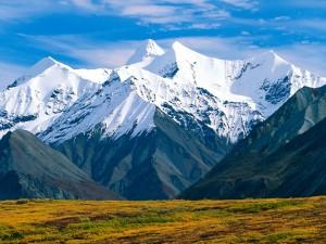 Parque Nacional Denali (Alaska)