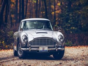 Aston Martin DB5 en un bosque