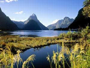 Milford Sound (Parque Nacional de Fiordland, Nueva Zelanda)