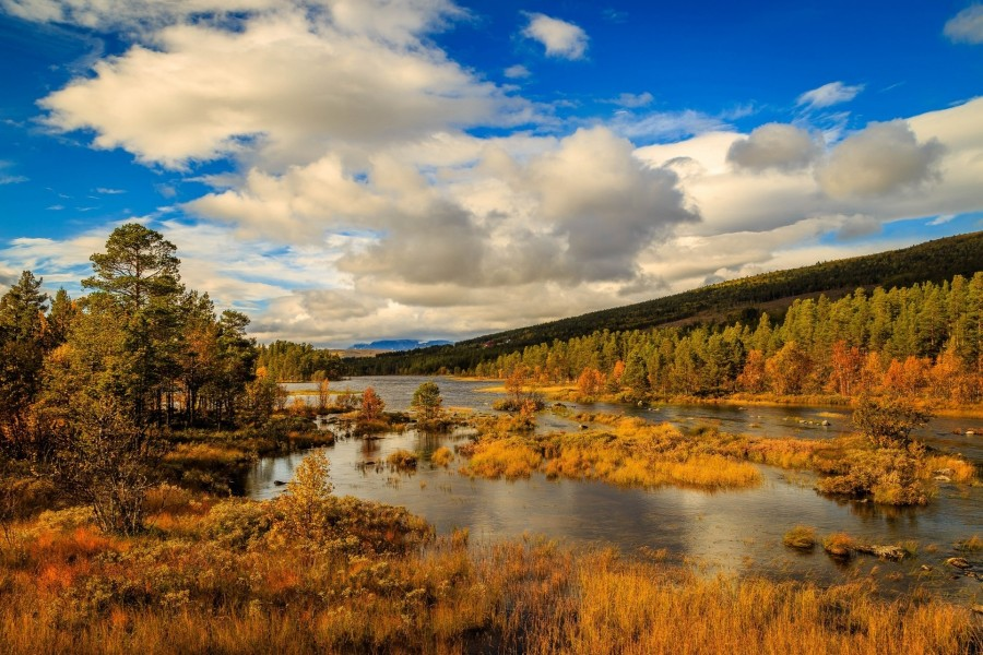 Paisaje de otoño en Noruega