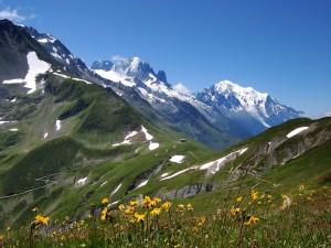 Montañas con flores y un poco de nieve en primavera