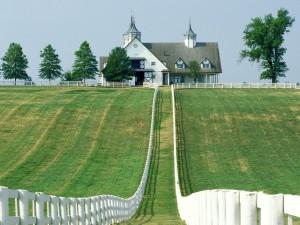 Camino verde hacia la granja Manchester (Lexington, Kentucky)