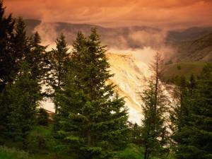 Vista del Parque Nacional de Yellowstone