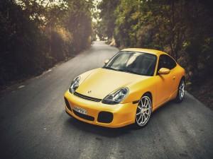 Porsche 996 amarillo en el camino
