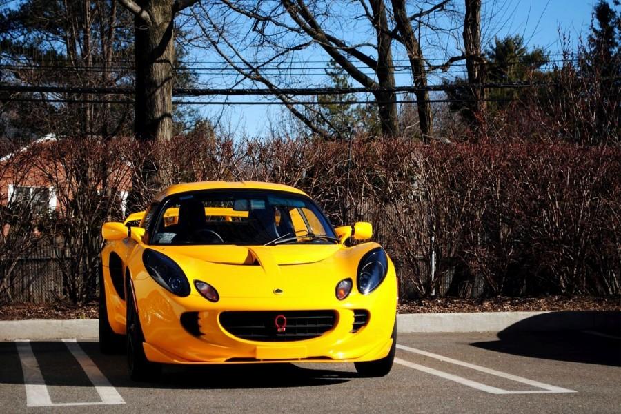 Vista frontal de un Lotus amarillo