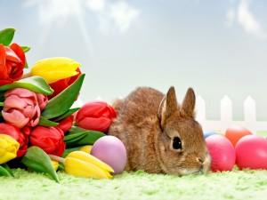 Un conejo junto a tulipanes y huevos de Pascua