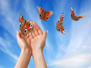 Mariposas hacia la libertad