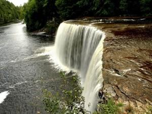 Cristalina agua de la cascada cae en el río
