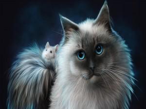 Hermoso gato con un ratón en la cola