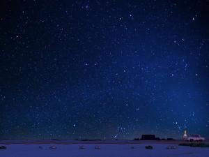 Homero observando las estrellas (Los Simpsons)