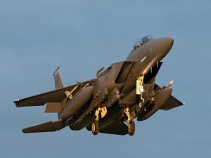 Aeronave McDonnell Douglas F-15 Eagle surcando los aires