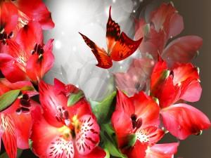 Mariposa volando sobre las flores rojas