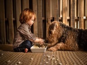 Un niño comiendo palomitas con su perro