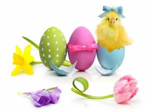 Pollito saliendo de un huevo de Pascua