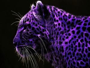 Leopardo abstracto de color púrpura