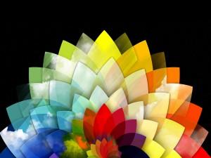 Flor de colores en 3D