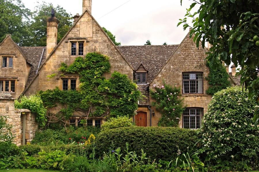 Arbustos junto a unas bellas casas