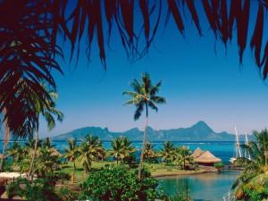 Moorea (Tahití)