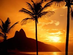Sol brasileño