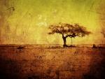 Árbol en la sabana