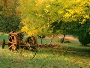 Antigua cosechadora en el campo