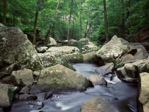 Agua entre las rocas