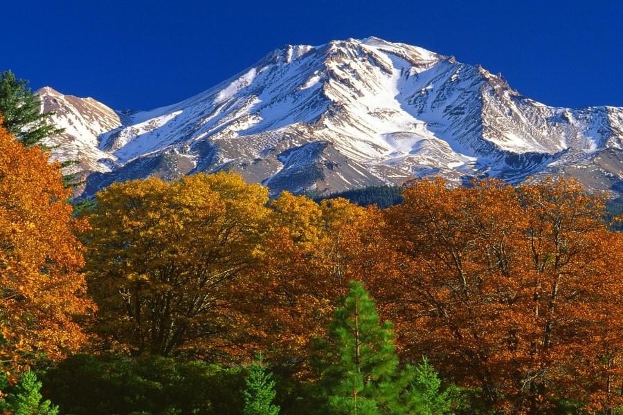 Monte Shasta (California)