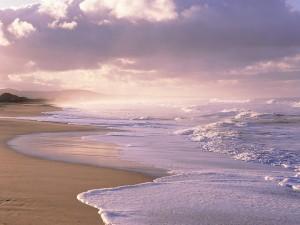 Oleaje en una gran playa