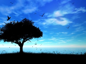 Silueta de un árbol y pájaros volando