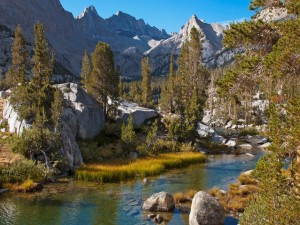 Río de aguas cristalinas corriendo entre las rocas