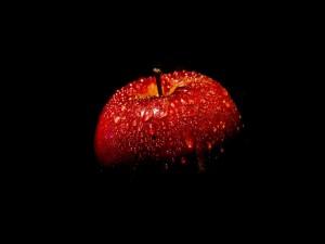 Manzana roja con agua en la oscuridad