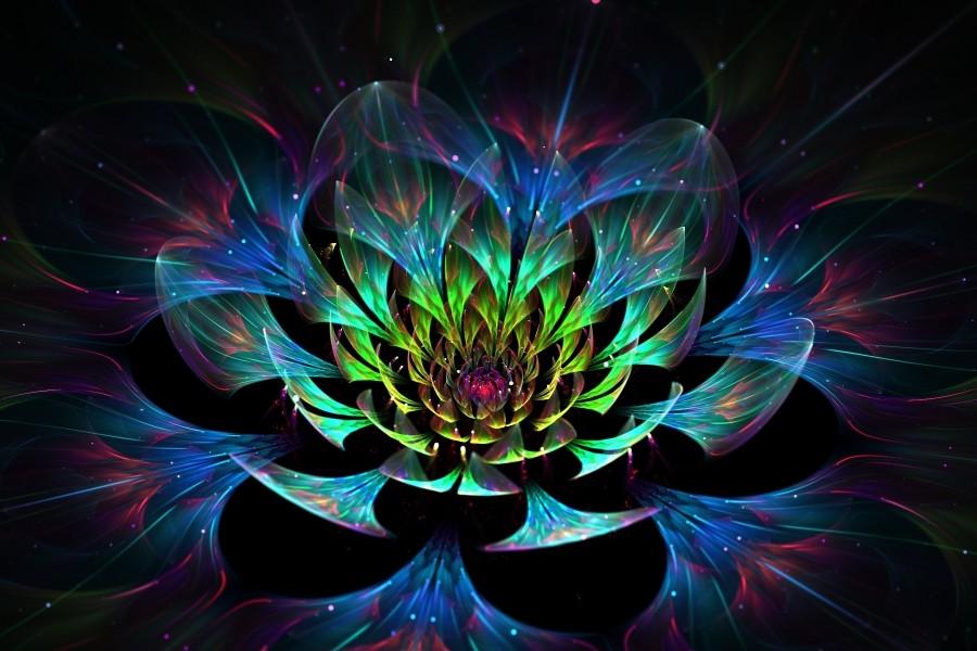 Flor de Loto en 3D
