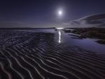 Luna brillando en marea baja