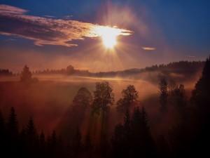 Un amanecer con niebla