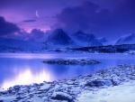 Invierno en el lago