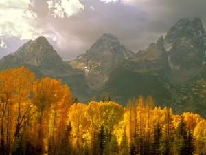 Otoño bajo las montañas