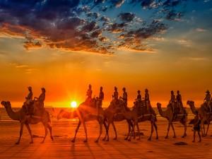 Personas en un caravana de camellos