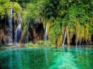 Cascadas en los bellos lagos de Plitvice (Croacia)