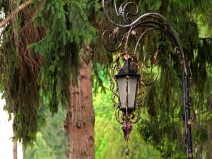 Farol entre los árboles