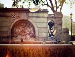 Palomas junto a una fuente