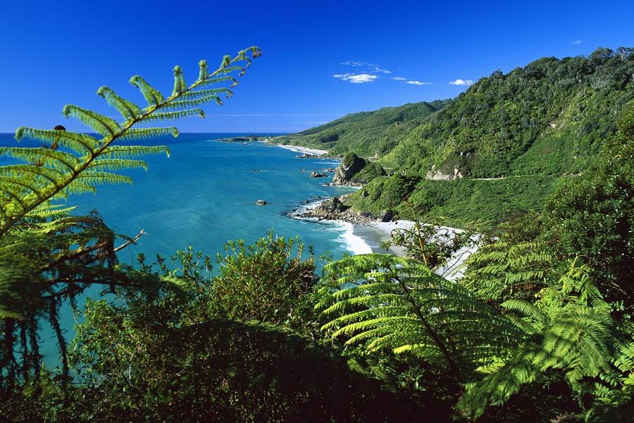 Hermosas vistas del Parque Nacional de Paparoa (Isla del Sur, Nueva Zelanda)