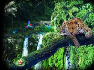 Leopardo y loros en la selva en un día soleado