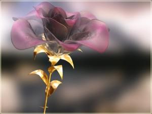 Una grandiosa rosa de cristal