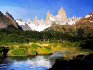 Día soleado en la Patagonia Argentina
